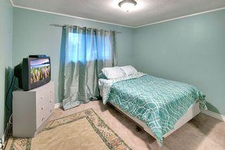 Photo 12: 12224 MCTAVISH PLACE in Maple Ridge: Northwest Maple Ridge House for sale : MLS®# R2319402