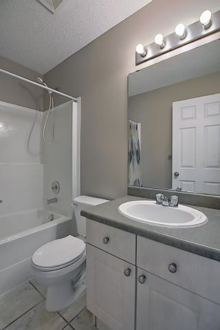 Photo 26: 16044 38 street NW in Edmonton: Zone 03 House for sale : MLS®# E4248402