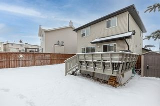 Photo 47: 218 Citadel Estates Heights NW in Calgary: Citadel Detached for sale : MLS®# A1073661