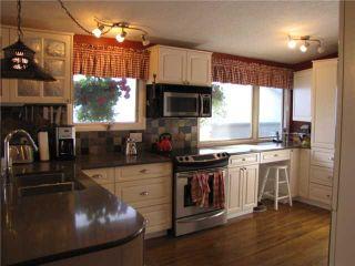 Photo 4: 140 MAPLEBURN Drive SE in CALGARY: Maple Ridge Residential Detached Single Family for sale (Calgary)  : MLS®# C3495102