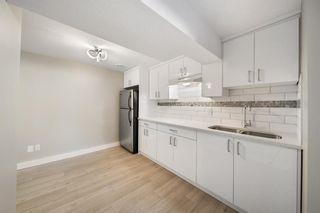 Photo 30: 28 Falton Mews NE in Calgary: Falconridge Detached for sale : MLS®# A1144383