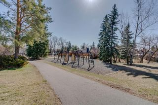Photo 46: 139 Cantrell Place SW in Calgary: Canyon Meadows Detached for sale : MLS®# A1096230