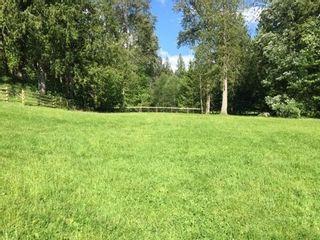 Photo 4: 48573 AUCHENWAY Road in Sardis - Chwk River Valley: Chilliwack River Valley House for sale (Sardis)  : MLS®# R2239963