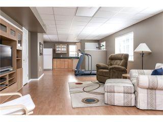 "Photo 17: 12090 237A Street in Maple Ridge: East Central House for sale in ""FALCON RIDGE ESTATES"" : MLS®# V1074091"