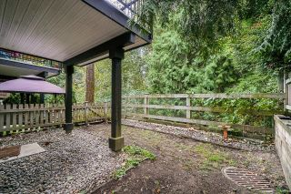 """Photo 31: 143 6747 203 Street in Langley: Willoughby Heights Townhouse for sale in """"Sagebrook"""" : MLS®# R2613063"""