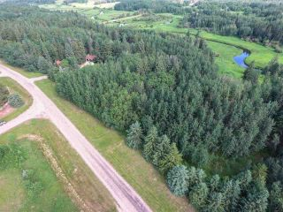 Photo 16: Pinebrook Block 1 Lot 2: Rural Thorhild County Rural Land/Vacant Lot for sale : MLS®# E4171871