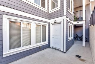 Photo 39: 12853 63A Avenue in Surrey: Panorama Ridge House for sale : MLS®# R2547537