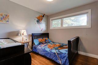 Photo 15: 3532 35 Avenue SW in Calgary: Rutland Park Detached for sale : MLS®# C4268473