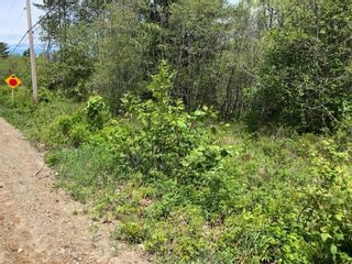 Photo 9: Lot Morganville Road in Morganville: 401-Digby County Vacant Land for sale (Annapolis Valley)  : MLS®# 202105239