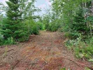 Photo 2: 6326 348 Highway in Glenelg: 303-Guysborough County Vacant Land for sale (Highland Region)  : MLS®# 202121589
