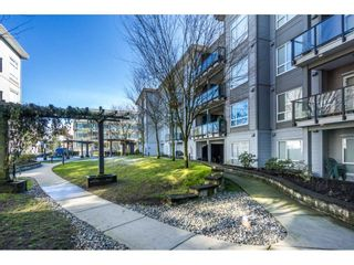 "Photo 19: 229 13733 107A Avenue in Surrey: Whalley Condo for sale in ""QUATTRO"" (North Surrey)  : MLS®# R2142814"