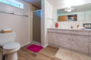 Photo 45: 4241 Buddington Rd in : CV Courtenay South House for sale (Comox Valley)  : MLS®# 857163