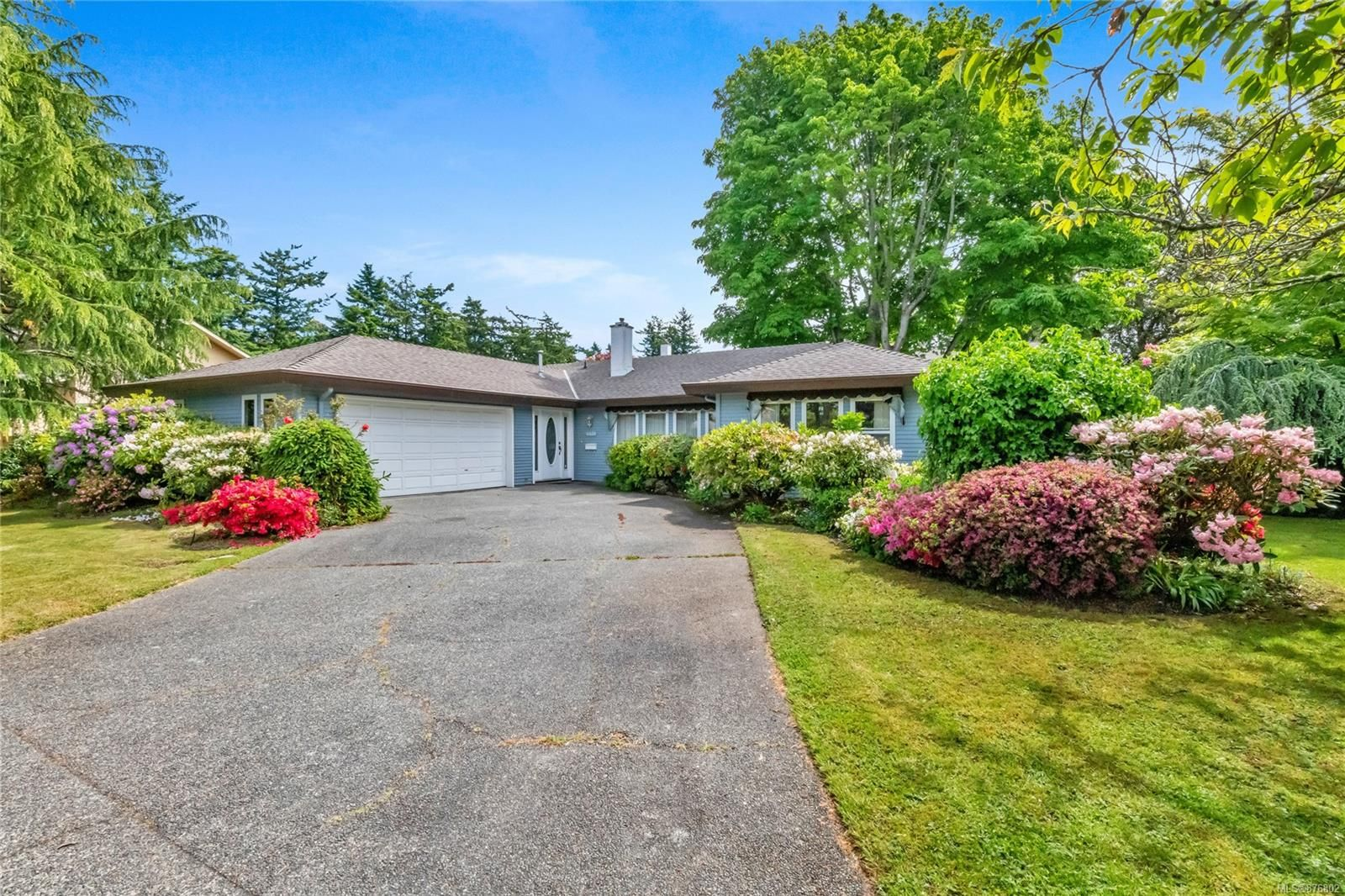 Main Photo: 4401 Colleen Crt in : SE Gordon Head House for sale (Saanich East)  : MLS®# 876802