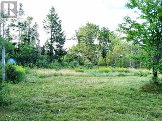 Photo 6: 555 Queens RD in Sackville: Vacant Land for sale : MLS®# M133180