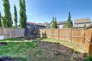 Photo 41: 150 MAHOGANY Heights SE in Calgary: Mahogany Detached for sale : MLS®# A1120366