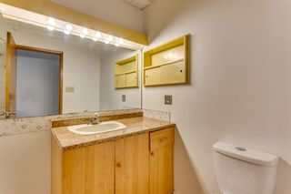 Photo 28: 11217 11 Street SW in Calgary: Southwood Semi Detached for sale : MLS®# A1126486