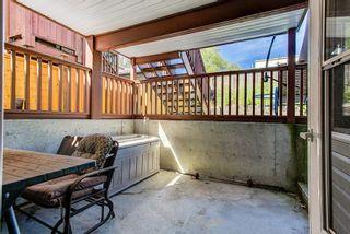 Photo 31: 24017 109 Avenue in Maple Ridge: Cottonwood MR House for sale : MLS®# R2615722