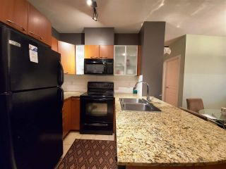 """Photo 8: 604 4078 KNIGHT Street in Vancouver: Knight Condo for sale in """"KING EDWARD VILLAGE"""" (Vancouver East)  : MLS®# R2566661"""