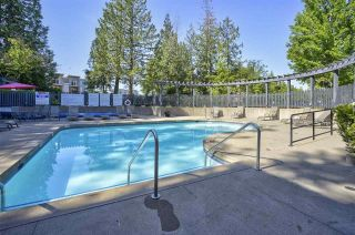 """Photo 17: 107 20875 80 Avenue in Langley: Willoughby Heights Townhouse for sale in """"PEPPERWOOD"""" : MLS®# R2610608"""