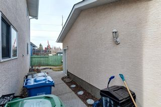 Photo 39: 167 Sunmount Bay SE in Calgary: Sundance Detached for sale : MLS®# A1088081
