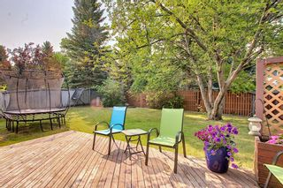 Photo 14: 172 Edendale Way NW in Calgary: Edgemont Detached for sale : MLS®# A1133694