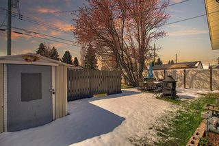 Photo 43: 1027 Penrith Crescent SE in Calgary: Penbrooke Meadows Detached for sale : MLS®# A1104837
