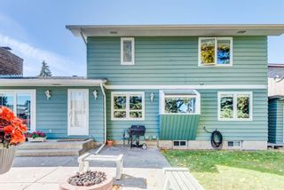 Photo 46: 244 Lake Moraine Place SE in Calgary: Lake Bonavista Detached for sale : MLS®# A1047703