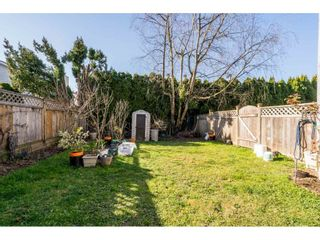 """Photo 23: 13 33900 MAYFAIR Avenue in Abbotsford: Central Abbotsford Townhouse for sale in """"Mayfair Gardens"""" : MLS®# R2563828"""