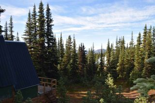 """Photo 4: 277 PRAIRIE Road in Smithers: Smithers - Rural House for sale in """"Prairie Cabin Colony"""" (Smithers And Area (Zone 54))  : MLS®# R2492758"""
