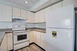 Photo 16: 22 Martin Crossing Way NE in Calgary: Martindale Detached for sale : MLS®# A1141099