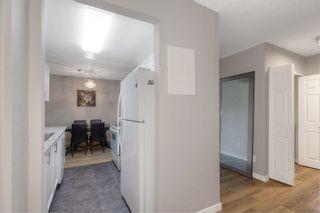 Photo 10: 219 1056 Bernard Avenue in Kelowna: Kelowna North House for sale (Central Okanagan)  : MLS®# 10239718
