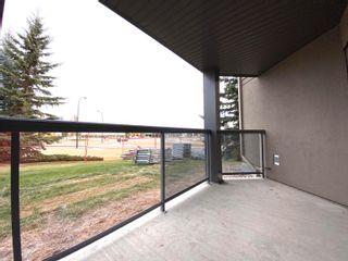 Photo 11: 134 279 SUDER GREENS Drive in Edmonton: Zone 58 Condo for sale : MLS®# E4265097