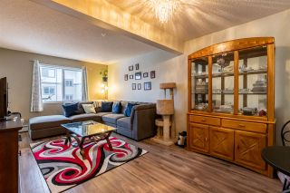 Photo 8: 304 1188 HYNDMAN Road in Edmonton: Zone 35 Condo for sale : MLS®# E4236609