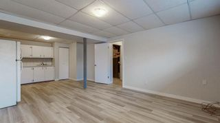 Photo 20: 3807 49 Street NE in Calgary: Whitehorn Detached for sale : MLS®# A1066626