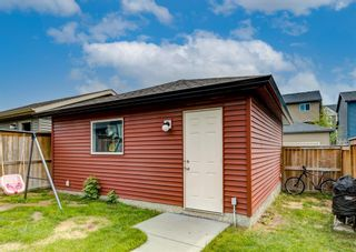 Photo 41: 481 Evanston Drive NW in Calgary: Evanston Detached for sale : MLS®# A1126574