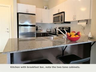 "Photo 6: 225 13789 107A Avenue in Surrey: Whalley Condo for sale in ""Quattro II"" (North Surrey)  : MLS®# R2326632"