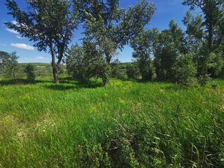 Photo 8: For Sale: 918 Creekside Drive, Cardston, T0K 0K0 - A1009683