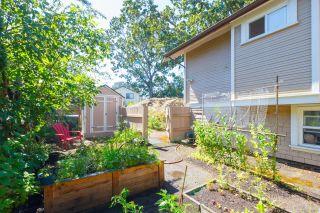 Photo 24: 1512 Pearl St in Victoria: Vi Oaklands Half Duplex for sale : MLS®# 853894