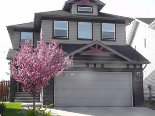 Photo 48: 155 CHAPALINA Mews SE in Calgary: Chaparral Detached for sale : MLS®# C4247438