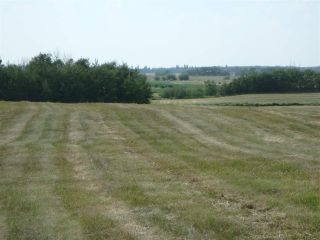 Photo 1: Hwy 21 and RR 224: Rural Leduc County Rural Land/Vacant Lot for sale : MLS®# E4212486