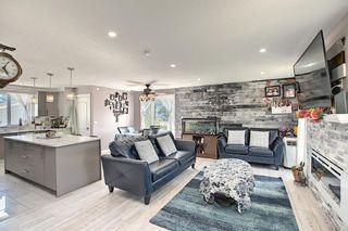 Photo 14: 6511 24 Avenue NE in Calgary: Pineridge Detached for sale : MLS®# A1152283