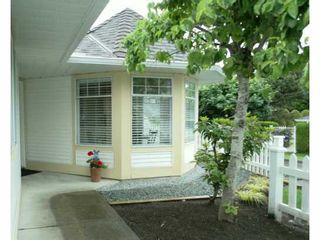 Photo 11: # 81 21138 88TH AV in Langley: Walnut Grove Townhouse for sale : MLS®# F1312902