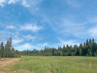 Photo 6: 31339 Rge Rd 55: Rural Mountain View County Land for sale : MLS®# A1136736