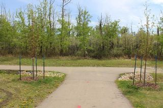 Photo 6: 17514 61A Street in Edmonton: Zone 03 House for sale : MLS®# E4252117