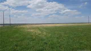 Photo 3: Near Range Road 251 in Cardston: Land for sale : MLS®# LD0168167