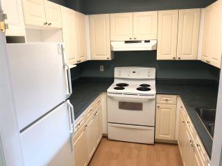 Photo 6: 205 9942 151 STREET in Surrey: Guildford Condo for sale (North Surrey)  : MLS®# R2337611
