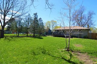 Photo 7: 30 Springbrook Road: Cobourg House (Bungalow) for sale : MLS®# X5227436