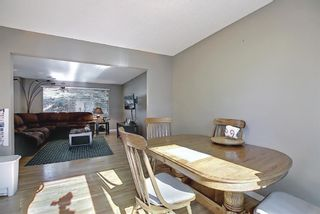 Photo 11: 12039 Candiac Road SW in Calgary: Canyon Meadows Detached for sale : MLS®# A1096218