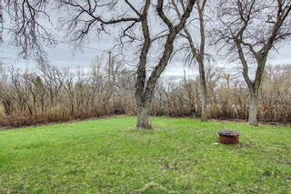 Photo 47: 4933 49 Avenue: Stavely Detached for sale : MLS®# A1100966