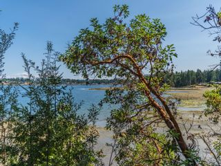 Photo 49: 1612 Brunt Rd in : PQ Nanoose House for sale (Parksville/Qualicum)  : MLS®# 883087